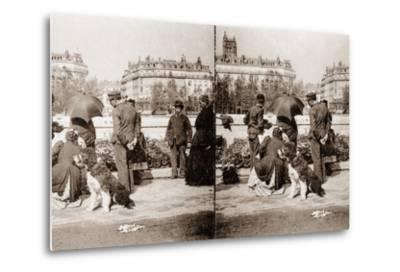 Stereoscopic View of a Flower Market, Paris, 1890--Metal Print