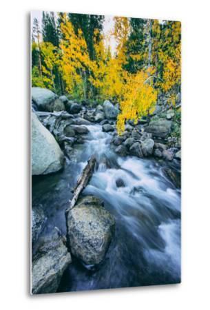 Autumn at Bishop Creek Canyon, Eastern Sierra Mountains, California-Vincent James-Metal Print