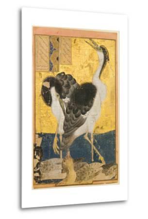 Two Herons with Ducks--Metal Print
