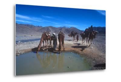 Desert Nomads, Bolan Pass, Pakistan--Metal Print