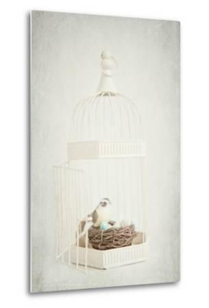 Small Birdcage-Susannah Tucker-Metal Print