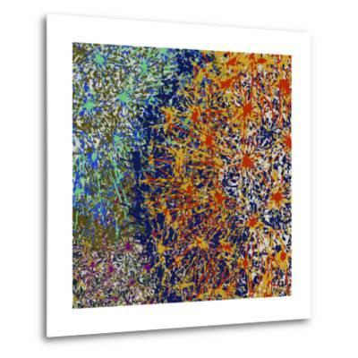 Profusion I-James Burghardt-Metal Print