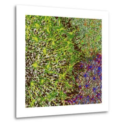 Profusion II-James Burghardt-Metal Print