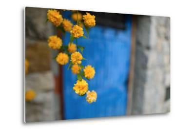 Marigolds Hang in Front of the Blue Door of a Stone Building-Keith Ladzinski-Metal Print