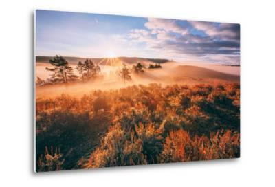 Sudden Fog and Light Beams, Morning at Yellowstone National Park-Vincent James-Metal Print