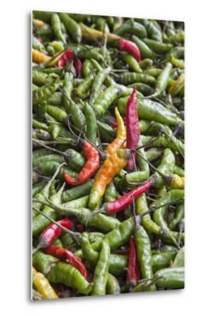 Hot Peppers of Various Color Used as Food in Indian Cuisine-Roberto Moiola-Metal Print