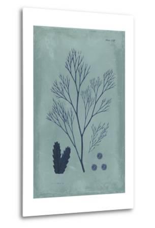 Indigo and Azure Seaweed V-Vision Studio-Metal Print