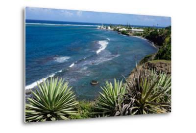 Atlantic Coast, St. Kitts, St. Kitts and Nevis-Robert Harding-Metal Print