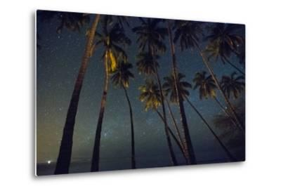 Starry Night in the Kapuaiwa Coconut Grove, Molokai-Jonathan Kingston-Metal Print