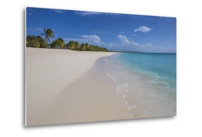 Barbuda, Antigua and Barbuda, Leeward Islands, West Indies-Roberto Moiola-Metal Print