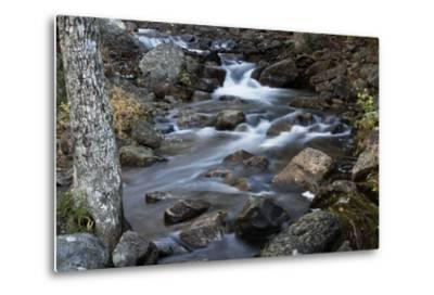 A Flowing River in Acadia National Park, Maine-Mauricio Handler-Metal Print