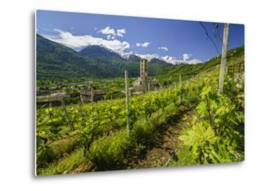 The Church of Bianzone Seen from the Green Vineyards of Valtellina, Lombardy, Italy, Europe-Roberto Moiola-Metal Print