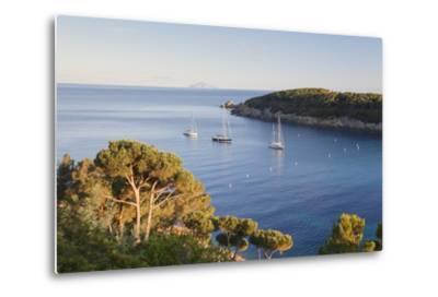 Sailing Boats in the Bay of Fetovaia at Sunset, Island of Elba, Livorno Province, Tuscany, Italy-Markus Lange-Metal Print