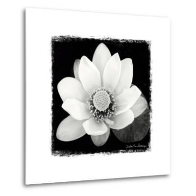 Lotus Flower II-Debra Van Swearingen-Metal Print