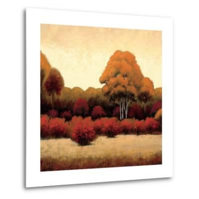 Autumn Forest I-James Wiens-Metal Print