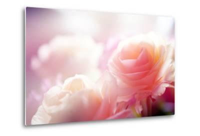 Beautiful Flowers Made with Color Filters-Timofeeva Maria-Metal Print