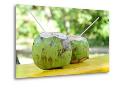 Fresh Coconut-Paul_Brighton-Metal Print