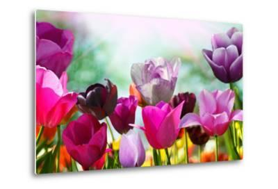 Beautiful Spring Flowers-Monia-Metal Print