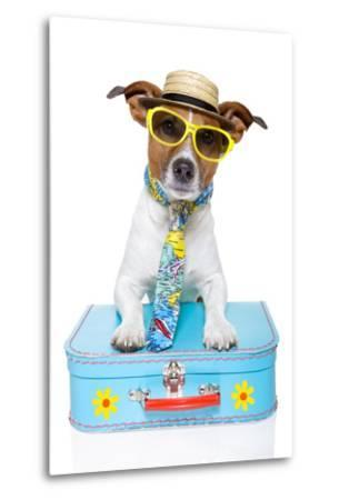 Tourist Dog With A Hat , Sunglasses And A Bag-Javier Brosch-Metal Print