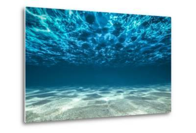 Ocean Bottom, View Beneath Surface-Cico-Metal Print