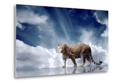 Predator Stay On The Sky Background-yuran-78-Metal Print