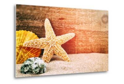 Sea Star and Shells-paulgrecaud-Metal Print