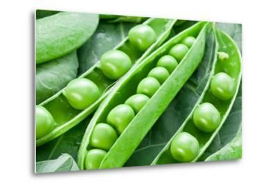 Pods of Green Peas on a Background of Leaves-Volff-Metal Print