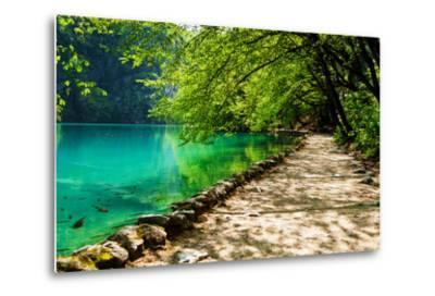 Path near A Forest Lake with Fish in Plitvice Lakes National Park, Croatia-Lamarinx-Metal Print