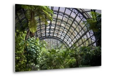 Inside the Botanical Building in Balboa Park in San Diego, California.  inside are over 350 Species-pdb1-Metal Print