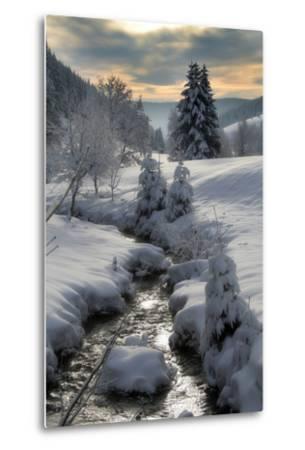 Winter-Hasenonkel-Metal Print