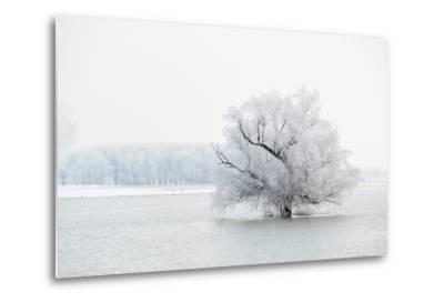 Winter Landscape-geanina bechea-Metal Print