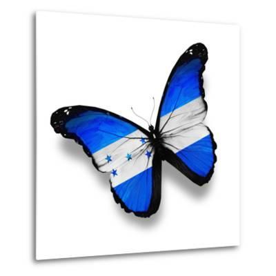 Honduras Flag Butterfly, Isolated On White-suns_luck-Metal Print