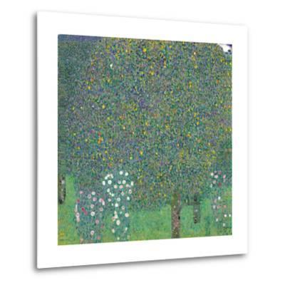 Rosebushes Under the Trees-Gustav Klimt-Metal Print