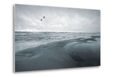 Stylized Monochrome Photo: Two Seagulls and Empty Coast of the Sea. Gulf of Finland, Baltic Sea, Na-Eugene Sergeev-Metal Print