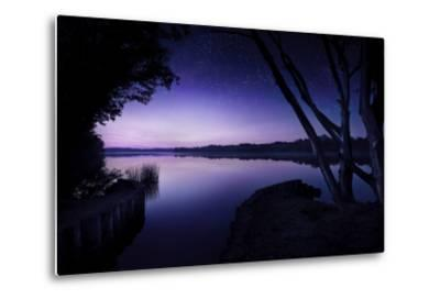 Tranquil Lake and Trees Against Starry Sky, Moscow, Russia--Metal Print