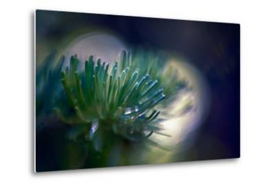 Needles-Ursula Abresch-Metal Print