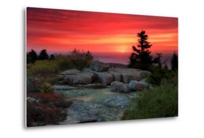 The Rising Sun over Atlantic Ocean and Boulders and Flora Atop Cadillac Mountain-Robbie George-Metal Print