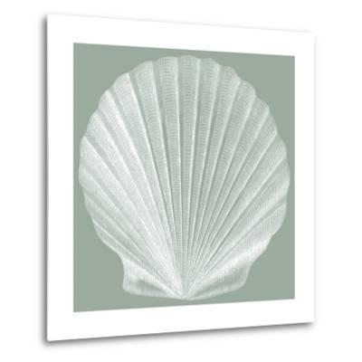 Seabreeze Shells II-Vision Studio-Metal Print