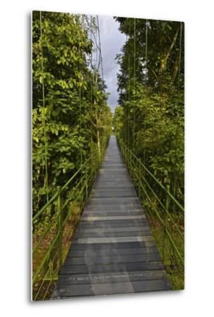 A Boardwalk Leads Through the Rain Forest at Costa Rica's La Selva Biological Station-Kike Calvo-Metal Print