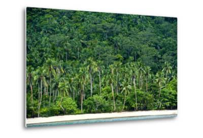 Tropical Rainforest and Palm Trees Line a Beach on a Deserted Island-Jason Edwards-Metal Print