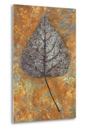 Close Up of Brown and Bleached Autumn or Winter Leaf of Black Poplar or Populus Nigra Tree-Den Reader-Metal Print