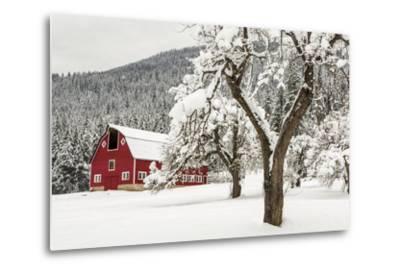Fresh Snow on Red Barn Near Salmo, British Columbia, Canada-Chuck Haney-Metal Print