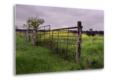 Texas Spring Field-Maarigard-Metal Print