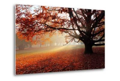Alone Tree in Autumn Park-TTstudio-Metal Print