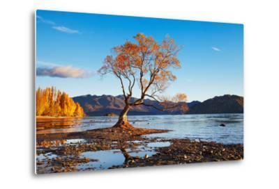 Autumn Landscape, Lake Wanaka, New Zealand-DmitryP-Metal Print