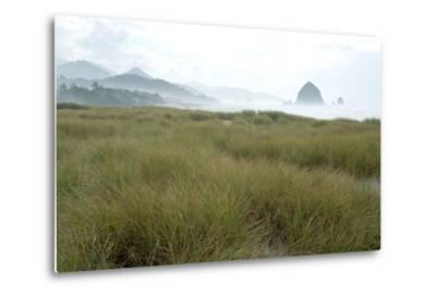 Fog at Cannon Beach, Oregon-Vickie Lewis-Metal Print