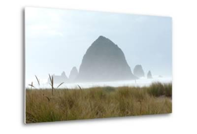 Fog at Cannon Beach, Oregon-Vickie Lewis-Metal Print