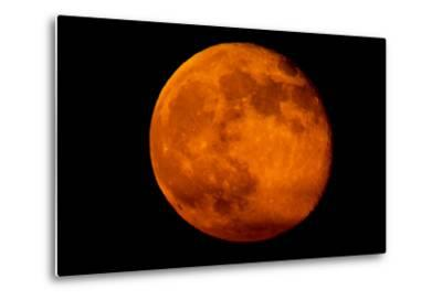 One Day after the 2013 Super Moon, the Brightest and Largest Full Moon of the Year-Kent Kobersteen-Metal Print