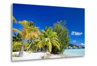 Beautiful Beach on Bora Bora Island in French Polynesia-BlueOrange Studio-Metal Print