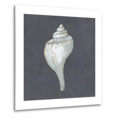 Shell on Slate IV-Megan Meagher-Metal Print